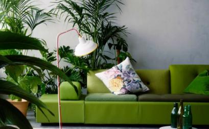 Ý tưởng nội thất mang thiên nhiên vào ngôi nhà bạn