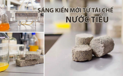 Biological tiles made of urine